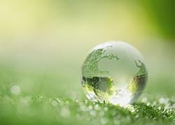 Carif et l'environnement 5
