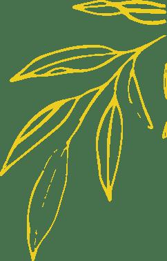 Arômes et Colorants 4